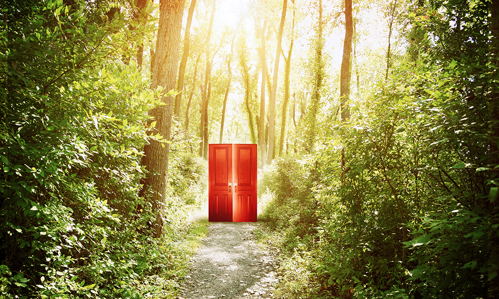 A red doorway is on a trail in the woods with trees for a concept about faith, freedom or opportunity.